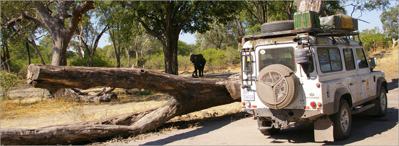 Adventurous Kruger Park 4x4 Eco Trail
