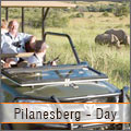 Big 5 Viewing at Pilanesberg