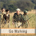 Go Walking Safari at the Kruger Park